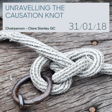 Photo of Professional Liability Conference: Unravelling the Causation Knot